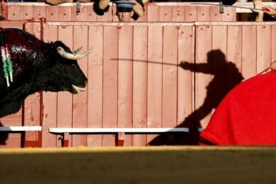 AbandoNOanimal, abolición corridas de toros