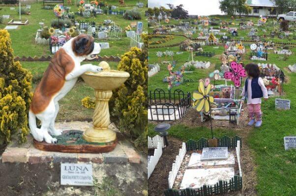 AbandoNOanimal, cementerio, mascotas